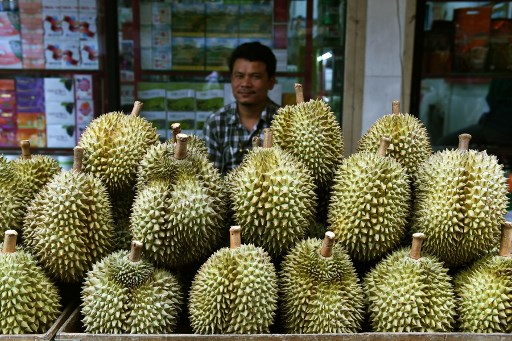 Final Fruit-ier: Thailand plans to send smelly durian into space