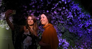 Gardens of the future spring up at Chelsea Flower Show