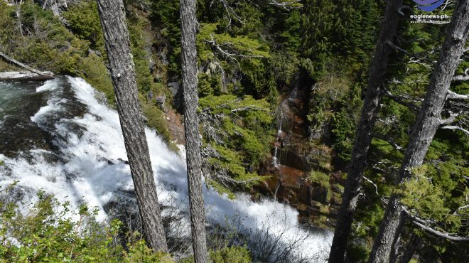 #EBCPhotography:  Narada Falls in Mount Rainer National Park