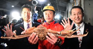 Shelling out: Japan crab fetches record $46,000 at auction