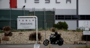 California authorities say Tesla plant could reopen next week