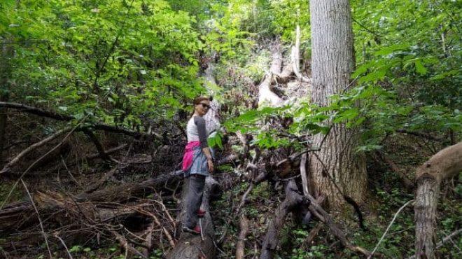 'Take a Hike' on a friendly neighborhood trail